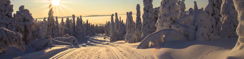 Voyage Sur Mesure Laponie,
