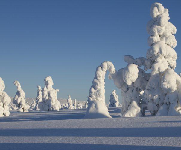Voyage en Laponie tout compris - Voyage haut de gamme - Ktravel